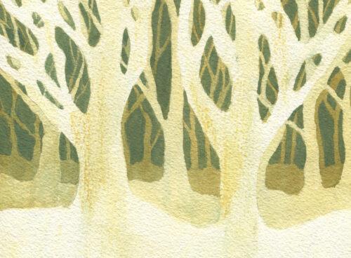 170 Treeeees