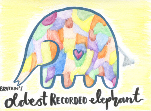 203 Britain's oldest recorded elephant 1