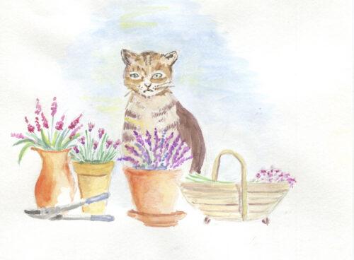 282 Cat with flowerpots 1