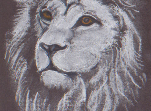 476 Lion